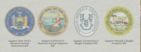 BFP-states