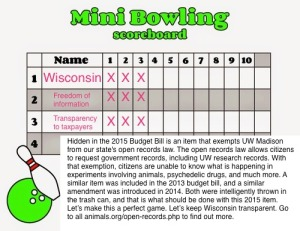 bowling metaphor